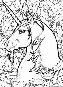Perfil unicornio colorear y dibujar